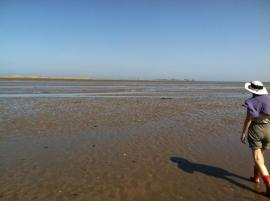 mud flats at Lindisfarne